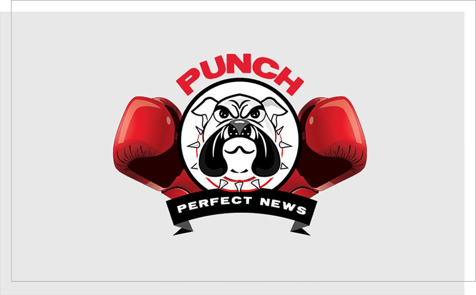 Punch Perfect News - Portfolio